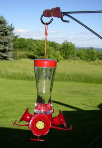 Hummingbird Feeder With Ant Barrier